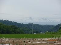 2013_0614ブログ110010.JPG